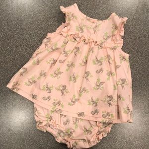 Baby Gap Dress and Bloomers!